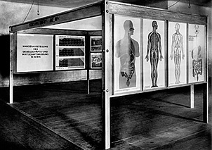 Otto_Neurath_Exhibition